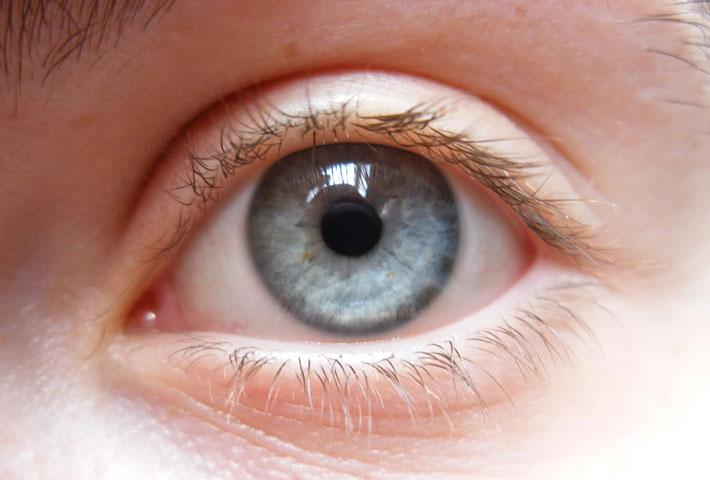 gli alimenti utili per la salute dei nostri occhi