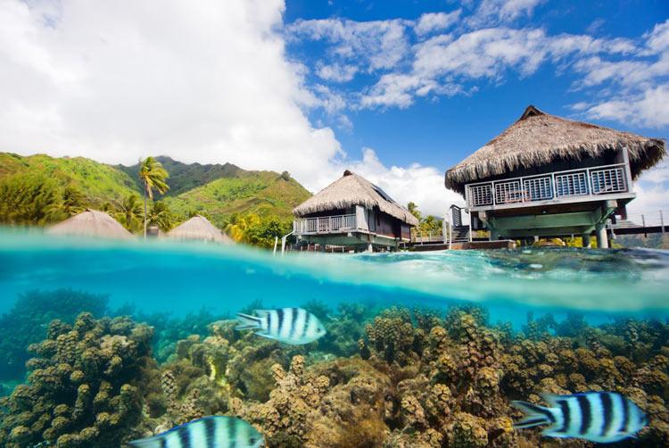 Moorea, Polinesia Francese - Isole Più Belle Del Mondo