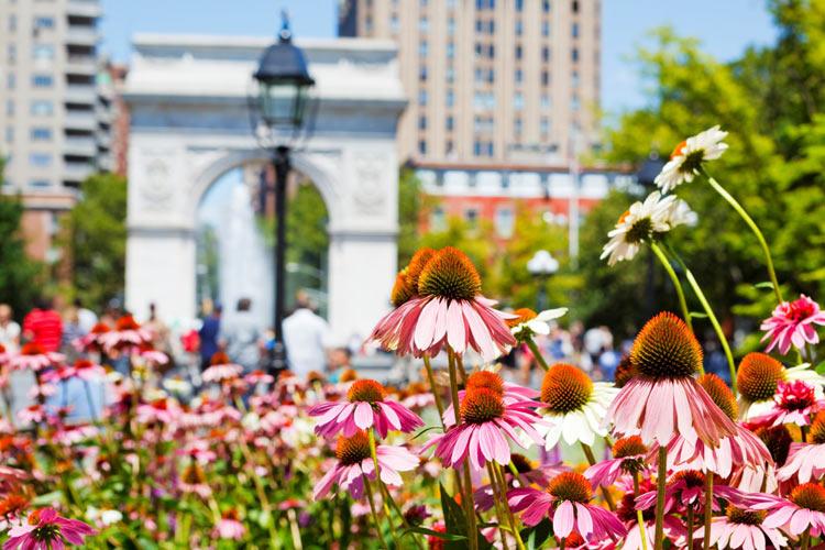 Lista Parchi Urbani Pubblici Più Famosi Di NYC